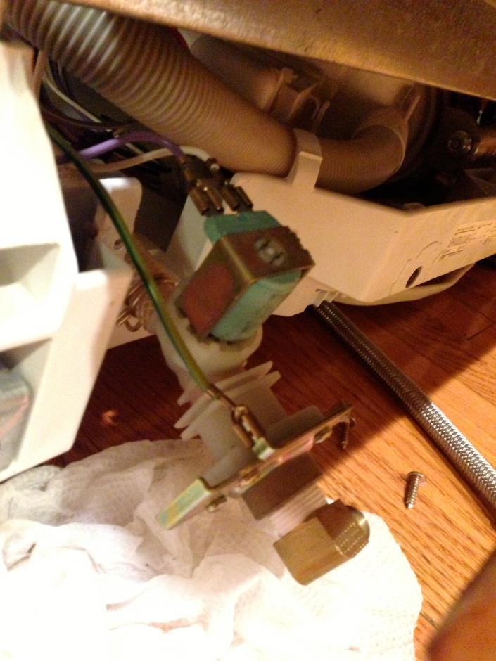 Dishwasher intake valve